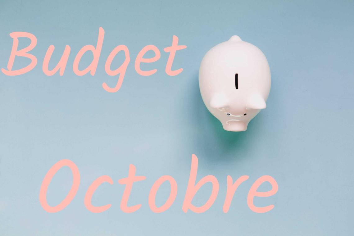 exemple de budget mensuel