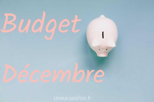 budget reel pour le mois de decembre